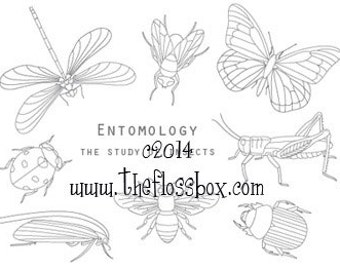 Entomology Embroidery Pattern