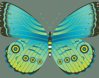 blue morpho butterfly limited edition print