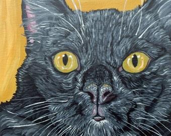 Black Cat  8 x 10  Original Canvas Painting Pet Art-Carla Smale