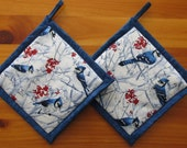 Blue Jay on Blue Potholders,  Bird Kitchen Decor, Bird Theme, Fabric Pot Holders, Blue Jay Hot Pads