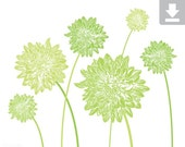 Art Print, Flower, Dahlia, Garden, Bloom, Printable, Digital File, Instant Download, Botanical, Stems, Green, White, Grass, Leaf, 5x7, 8x10