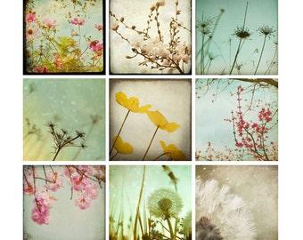 Pink Flower Photography Set, dandelion wall art, photo set, nursery decor, pastel colors, nature photographs, floral pictures, 4x4 prints