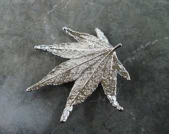 Sale - Free US Shiping - Real Leaf Brooch/Pin and Pendant - Sterling Silver - Japanese Maple