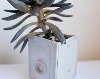Camera Planter - cement retro home decor, box camera, concrete plant pot, garden succulents