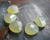 Serpentine, 16mm Faceted Briolettes, 5pc set