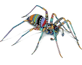 South African Spider Illustration