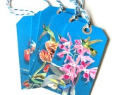 12 Gift Tags, Hummingbirds and Flowers, Blue Pink, Merchandise Tags, Party Favor Tags