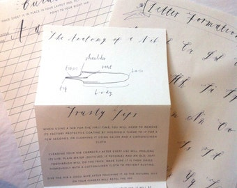 Calligraphy Starter Booklet- Nib Knowledge and Other Tales.