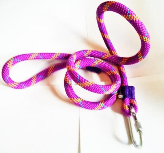 Braided nylon rope dog leash