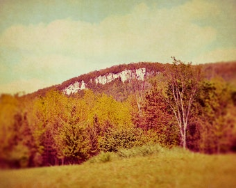 BUY 2 GET 1 FREE Nature Photography, Autumn Photo, Canada, Orange, Red, Green, Country, Nature Photography, Wall Decor - Country Autumn