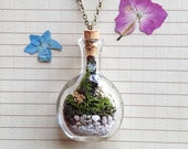 Terrarium Necklace with Lichen - Hand Blown Glass