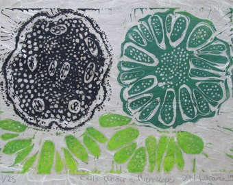 Under A Microscope Limited edition color lino block print.  Printed and signed in pencil by the artist