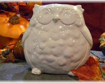 Owl Centerpeice  Statue  Ceramic  Glazed White  BIG eyes  Elegant  ceramic Chubby Fat Owl Figurine  Statue