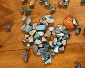 Abalone-Mini Bits of polished crushed shells for terrariums-2 colors-Vivariums-Weddings-Craft Projects and More 2x3 bag
