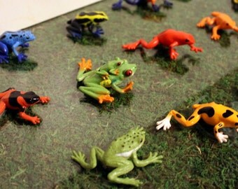 Terrarium-Frogs-Dart frogs-Red eyed tree frog-DIY a frog terrarium-Mood Moss live or preserved