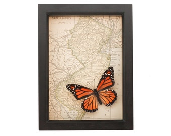 Framed Map New Jersey with Monarch Butterfly Art