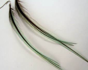 Light teal Feather Earrings badger