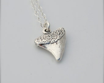 Shark Tooth Charm Sterling Silver Necklace