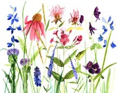 Botanical Watercolor Painting Garden Flowers Giclee Print Reproduction by Laurie Rohner