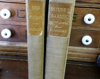 Pair Antique Illustrated 1901 Bird And Wild Flowers Books by Blanchan from Rustysecrets