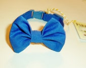Kitten Bow Tie Collar In Royal Blue