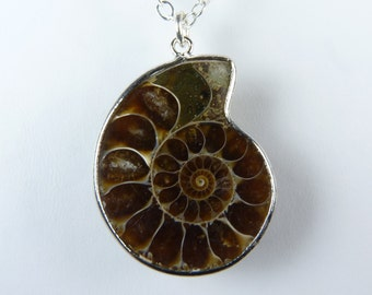 Genuine Fossil Necklace, Espresso Coffee Brown and Taupe Ammonite Fossil Pendant Necklace on a Sterling Silver Chain