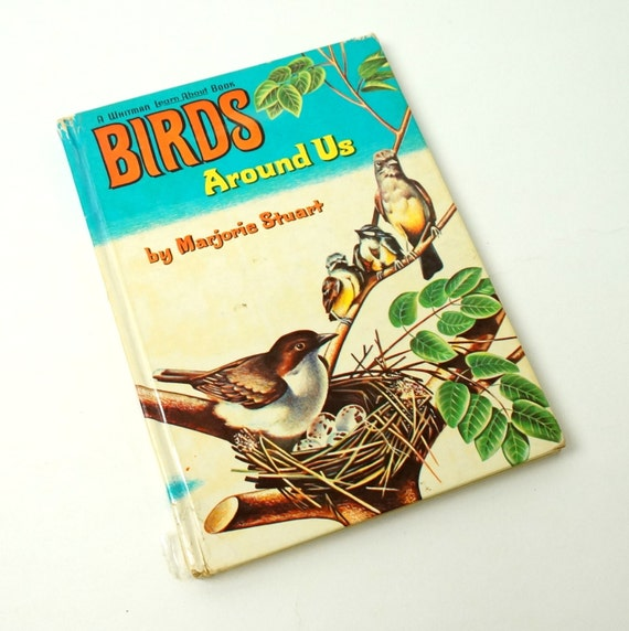 Birds Around Us by Marjorie Stuart 1961 / Find Out All About Our Feathered Friends / Vtg Childrens Book