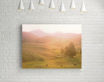 Landscape Canvas Art // Farm Landscape Photography // Mustard, Purple, Pinks and Dark Greens for a Modern Home // Los Angeles Farms Print
