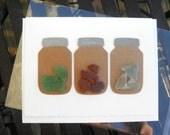 Mason Jar Note Card lake Erie Ohio Beach Glass