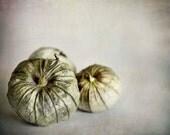 Tomatillos Photograph, Rustic Kitchen Decor, Green, Beige, Food Photography, Still Life, Kitchen Print