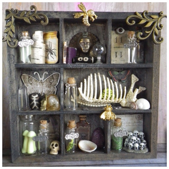 Curio Cabinet Shelf Witch Apothecary Macabre Trinket Wall