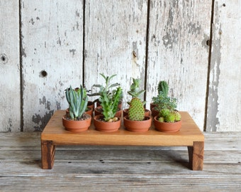 Aldermere Tray made from reclaimed antique Cypress, Planter, Egg Tray, Succulents, Indoor Planting, Home Decor, Centerpiece