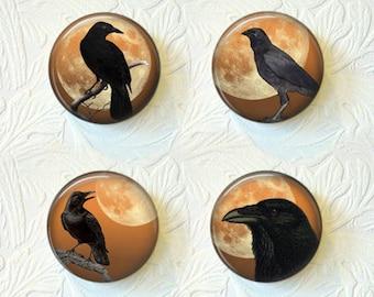 Magnet Set  Crows  Buy 3 Get 1 Free  426M