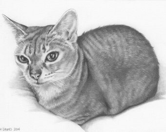 Custom Pet Portrait in Graphite - 5x5 or 5x7