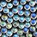 Rainbow Moonstone Rose Cut Cabochon 6mm Round , AA grade - 1 cab, CMOR2ARCR6