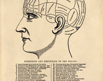 Vintage Phrenology Chart Reproduction Poster. Science Educational Diagram Human body Biology Print - CP115