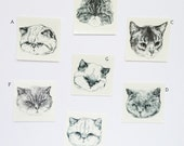 BRAND NEW grumpy temporary tattoos - set of three fake cat tatts - 7designs to choose from - realistic tattoos - mix and match - cattoos