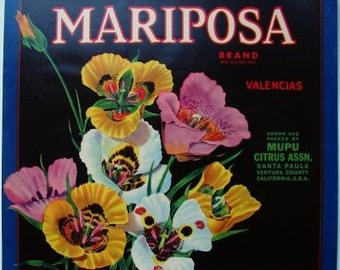 1930s Pansy Pansies Bouquet Mariposa Ventura County CA Crate Label