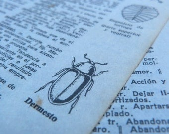 20 Vintage illustrated dictionary sheets from Spain, 1960s