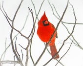 Red Cardinal Bird perched on Bare Branches Nature Bird Wall Art Home Decor Minimalist Digital Download or Photo Print. Fine Art Photography