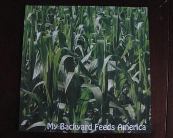 12x12 cornfield scrapbook paper