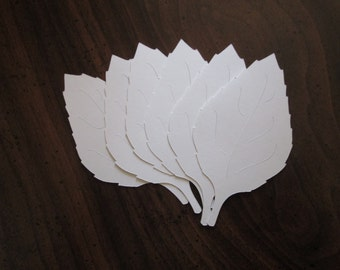 100 Large Veined White Fall Leaves die cuts