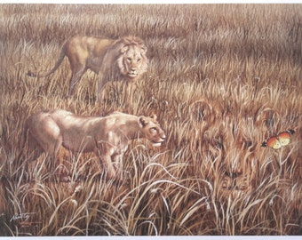 DIVERSION illusion print  by RUSTY RUST /  lions butterfly / personally signed 11 x 14.5 / L-169-P
