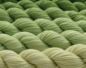 Gradation in Green Tea Yarn