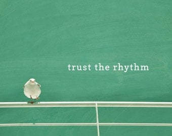 Trust The Rhythm motivational poster, seagull photo print, typography word art, summer, beach decor