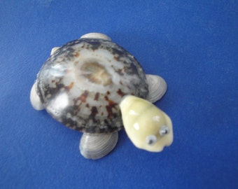 Sea Shell Turtle Limpet Shell  Magnet Figurine