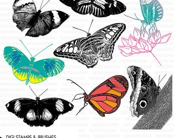BUTTERFLIES Clip Art - 8 Digital Stamps and Brushes - INSTANT DOWNLOAD - for Cards, Scrapbooking, Journaling, Collage, Crafts, Invites