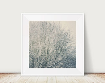 falling snow photograph tree photograph surreal photograph winter photograph nature photography abstract art falling snow print