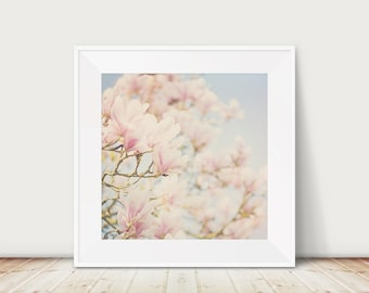 magnolia tree photograph pink magnolia photograph pink flower photograph magnolia tree print nature photography pastel home decor