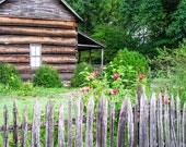 Springtime at grandmas cabin, flowers, fence log cabin, mountains